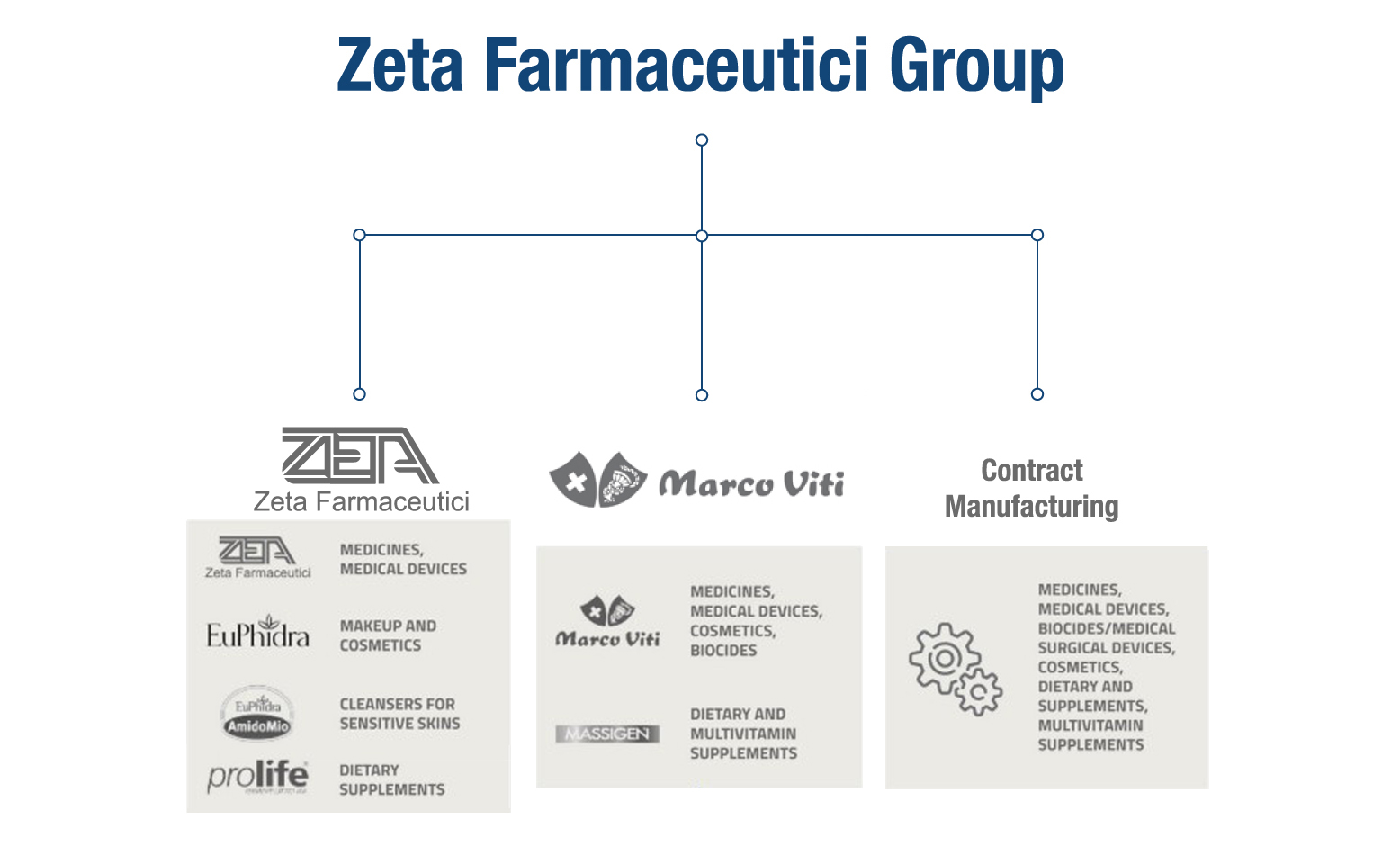 ZetaFarmaceuticiGroup-info_En