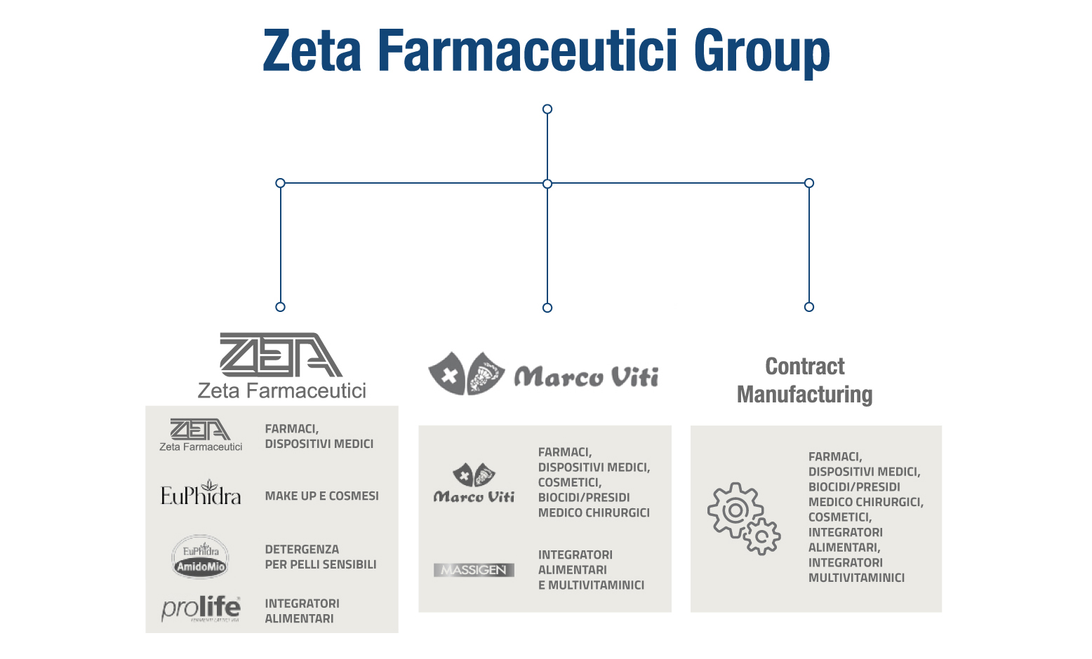 ZetaFarmaceuticiGroup-info